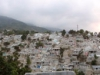 Earthquake Damage, Haiti, 2010